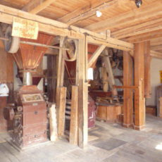 Motormühle