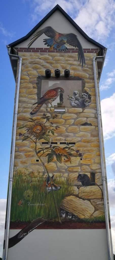 ...und die zur Mühle zeigende Nordseite mit Turmfalken